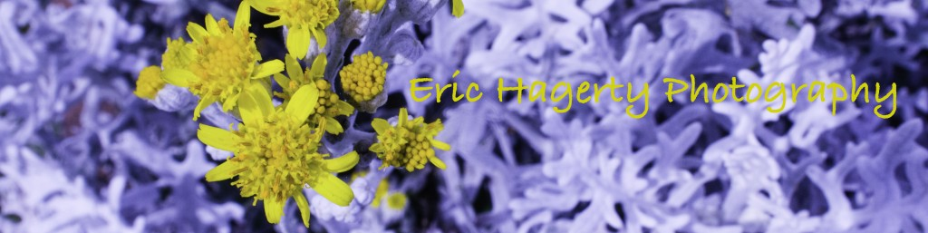 Photographs by Eric Hagerty
